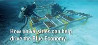 NMSC Factsheet for Universities
