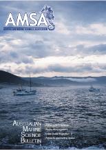 magazine cover AMSA Bulletin 206